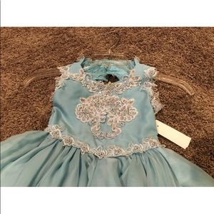 Robinson Dresses - 4 Pageant Flower Girl Special Occasion Dress NWT
